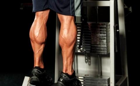 آموزش حرکت ساق پا