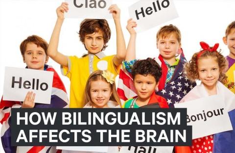 تاثیر دو زبانی بودن بر شناخت کودک