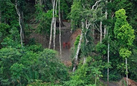 بیماری مرگآور قبیله آدمخوار گینه نو