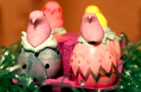 دستور پخت کیک در پوسته تخم مرغ