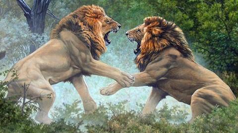 نبرد چهار شیر بر سر قلمرو
