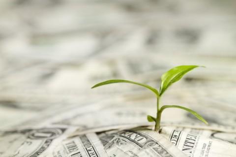 سرمایهگذاری توسعهپذیر چیست؟