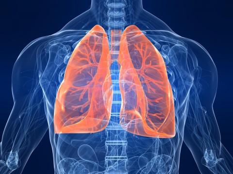 سفر باورنکردنی اکسیژن در بدن