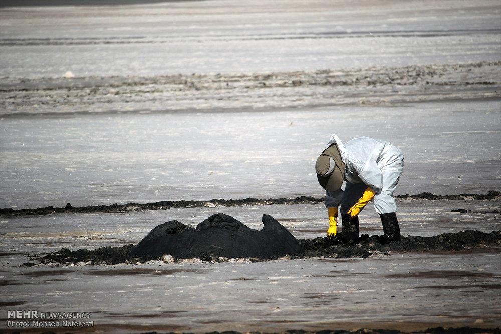 مرهم هنرمندان بر یک فاجعه زیستمحیطی