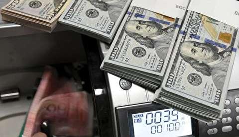 جزئیات تصمیم اخیر دولت در خصوص ارز
