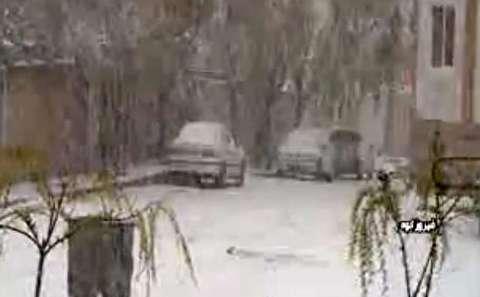بارش بیش از 10 سانتیمتر برف در بهار فیروزکوه