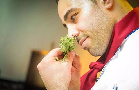 حس بویایی ما چگونه کار میکند؟