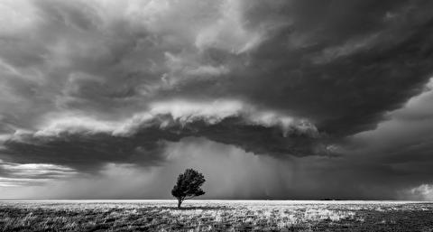 تنفس در میان طوفان در قاب 4K