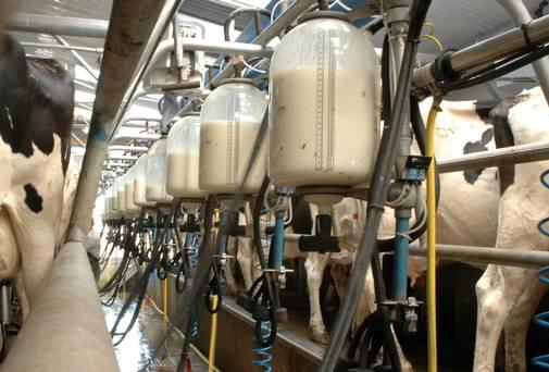 هشدار نسبت به بحرانی مهم تر از گرانی و واردات گوشت؛ آیا برای تأمین شیر هم باید به فکر واردات باشیم؟