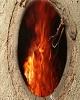 تئوری جدید درباره سر به نیست کردن جسد خاشقجی؛ سوزاندن...