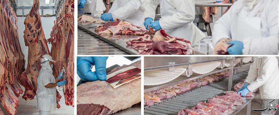 شائبه دخالت مافیای واردات گوشت در جلوگیری از اعزام دامپزشک ناظر