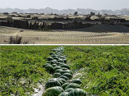 دو تصویر تأمل برانگیز از چرایی هولناک بودن خشکسالی در ایران!