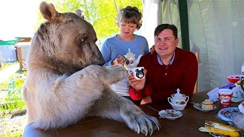 صبحانه با خرس خانگی
