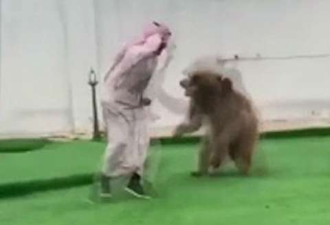 بازی مرد با خرس خانگیاش سوژه فضای مجازی شد