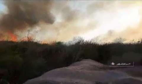 مهار آتش سوزی نیزارهای اروند
