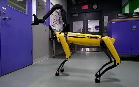 معرفی کامل ربات اسپات مینی