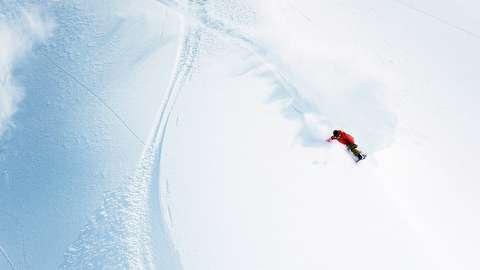 اسکی در شیب تند جنگلهای یوتا
