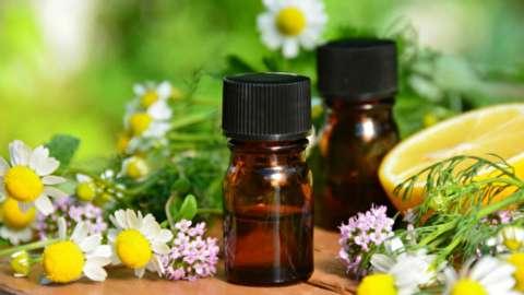 آموزش عطرسازی، فصل سوم: روغنهای عطرسازی چه بویی میدهند؟