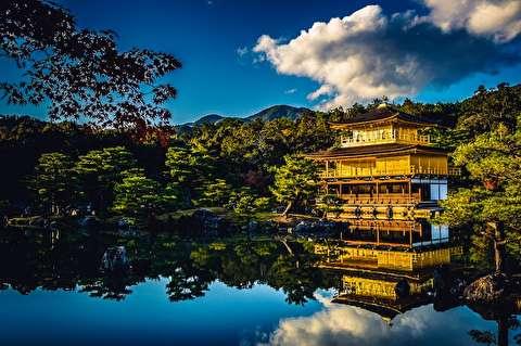 طبیعت بکر ژاپن از نمای نزدیک
