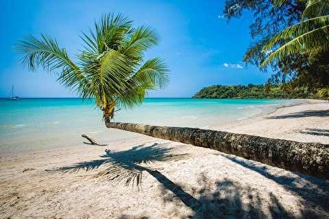 جزیره ککوت از نمای نزدیک