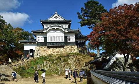 قلعه ماتسویاما  از نمای نزدیک