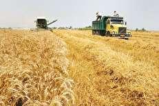 مخالفت 16 تشکل صنفی کشاورزی با تشکیل «وزارت واردات»/ کشاورزان بازنده بزرگ لغو قانون تمرکز خواهند بود