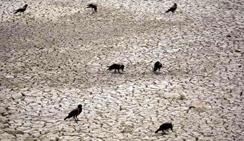 بحران آبی در دشتهای ایران