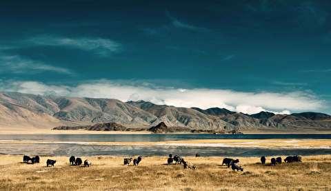 طبیعت مغولستان با کیفیت 4K
