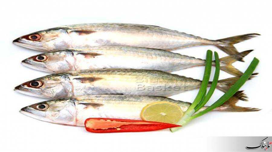 از خواص ماهی چه میدانید؟