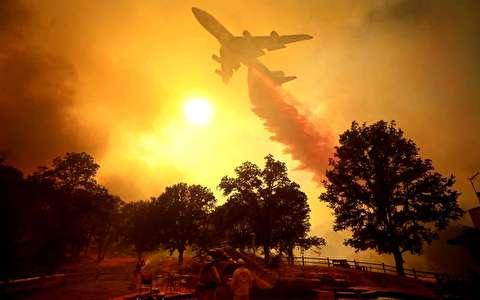 ادامه آتش سوزی عظیم در جنگلهای کالیفرنیا