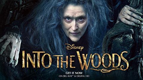 جلوههای ویژه فیلم سینمایی بهسوی جنگل