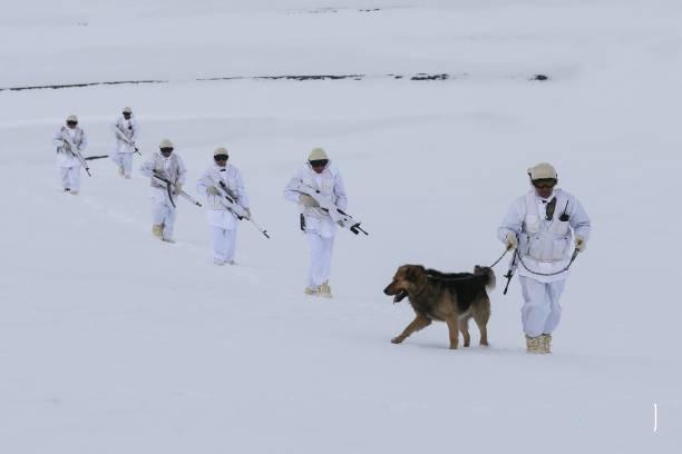 استفاده از سگ در امنیت مرزهای ترکمنستان