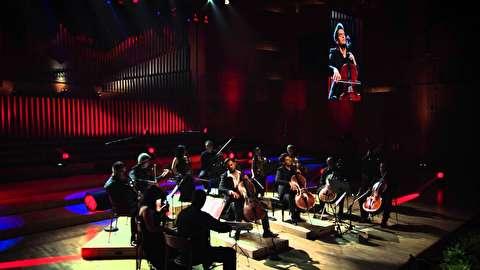 موومان دوم کنسرتو ویوالدی برای ویولن در ای مینور ؛ تو سلوز