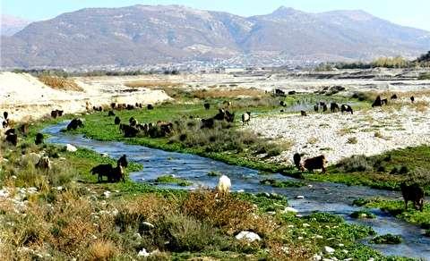 فرصتها و تهدیدهای رودخانه بِشار یاسوج