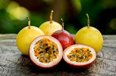 قیمتهای نجومی میوههای لوکس در ایران