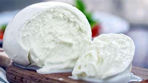 چگونه پنیر موتزارلا تهیه میشود؟