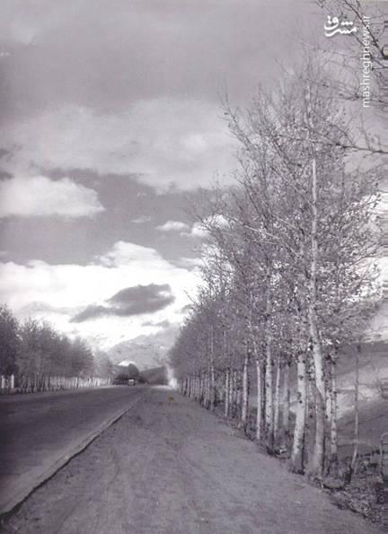 خیابان ولیعصر (عج) در سال ۱۳۳۴