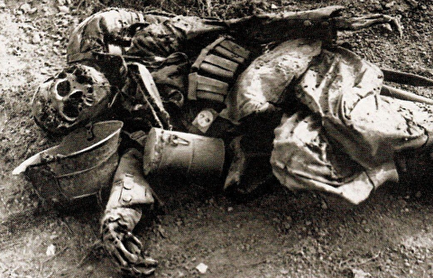گرانترین نبرد جنگجهانی در کشتارگاه وردن