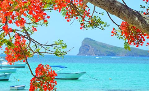 جزایر موریس از نمای دیگر