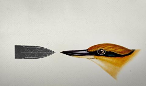 بیومیمکری، بازتاب طبیعت در تکنولوژی