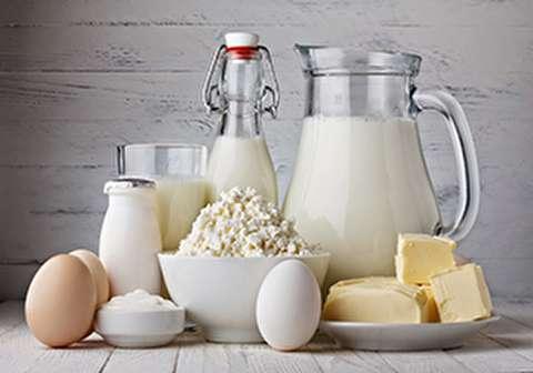 شیر تو شیر بازار لبنیات