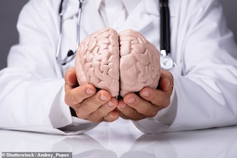 مغز بزرگتر نشانه باهوشتر بودن است؟
