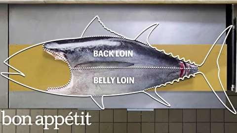 روش قصابی کامل ماهی تن