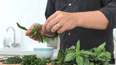 راهنمای استفاده از سبزیجات معطر برای آشپزی