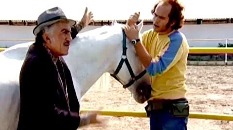 سکانسهایی از فیلم اسب