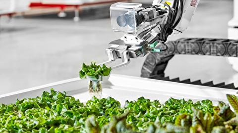 مزرعه روباتیک در کشاورزی تحول ایجاد میکند