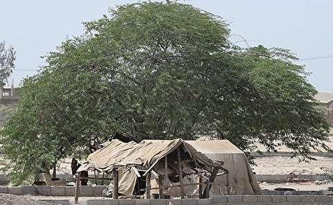 چهره بیرحم فقر در حاشیه بندرعباس