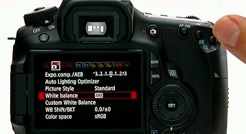 آموزش دوربین دیاسالآر: اصول اولیه کار با دوربین