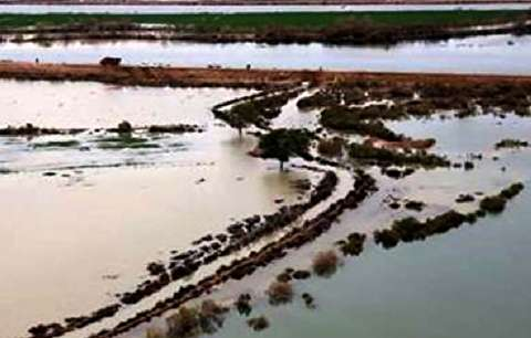 شرکت نفت مسیر آب به هورالعظیم را بسته است؟