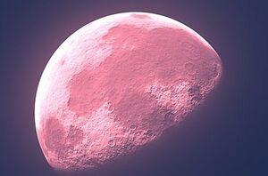 پدیده نجومی «ماه صورتی» را از دست ندهید